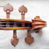 violin scroll front view